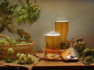 Обои для рабочего стола Натюрморт Пиво Рыба Хмель Кружки Корзины Стакан Еда