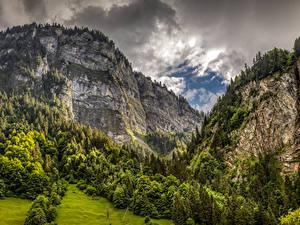 Обои Швейцария Гора Леса Альп Скале Природа