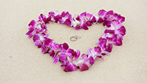 Картинки День святого Валентина Серый фон Сердечко Лепестки Кольцо 2 Цветы