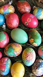 Фотография Праздники Пасха Много Яйцо