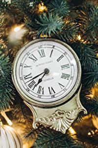 Обои Часы Рождество Циферблат Ветки
