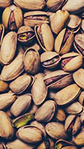 Фото Орехи Текстура Pistachios Продукты питания