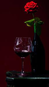Фотография Вино Розы Цветной фон Бутылки Бокалы Еда