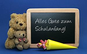 Фотография Плюшевый мишка Двое Сидящие Синий Немецкий Alles Gute zum Schulanfang
