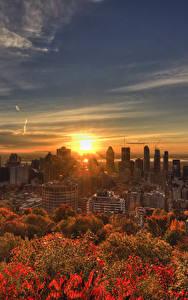 Фото Канада Здания Рассветы и закаты Осень Небо Мегаполис Montreal