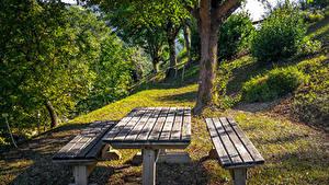 Фотографии Италия Парки Дерево Столы Скамья Кустов Casola Valsenio botanical garden Природа