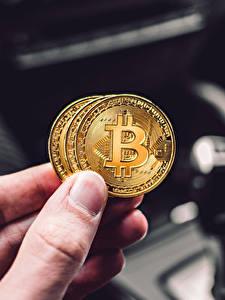 Картинка Пальцы Монеты Деньги Биткоин Рука Боке