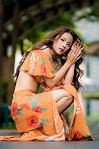Фотография Азиатка Шатенки Платье Сидит Взгляд Размытый фон