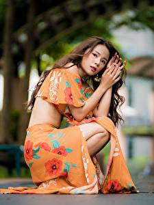 Фотография Азиатка Шатенки Платье Сидит Взгляд Размытый фон молодые женщины