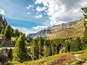 Обои Швейцария Горы Небо Пейзаж Альпы Ель Облачно Природа