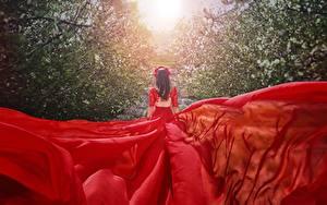 Фотографии Платья Красные Сзади Malika Drobot