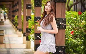 Фотографии Азиаты Боке Шатенки Платье Рука молодая женщина