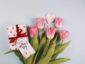 Обои для рабочего стола Праздники Тюльпаны Серый фон Розовых Сердце Подарков цветок