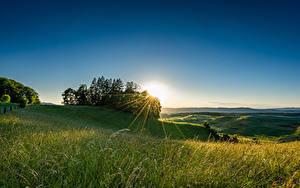 Фотография Швейцария Поля Рассвет и закат Дерева Лучи света Природа
