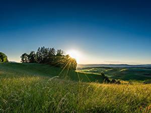 Фотография Швейцария Поля Рассвет и закат Дерева Лучи света