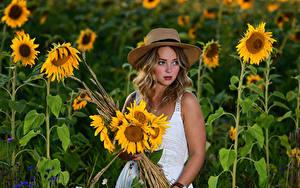 Картинка Подсолнечник Букеты Блондинок Платья Шляпа Selina молодые женщины Цветы