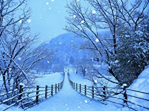 Фото Япония Зима Дороги Снег Забор Shirakawa-go and Gokayama