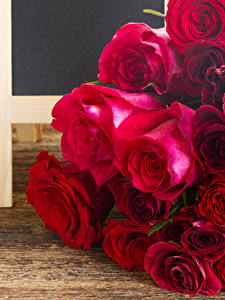 Обои Розы Крупным планом Доски Бордовые цветок