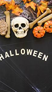 Фото Хеллоуин Праздники Черепа Тыква Английский