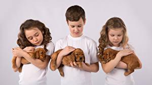 Фотографии Собаки Цветной фон Втроем Мальчики Девочки Щенок Дети