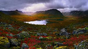 Обои Россия Крым Озеро Камни Пейзаж Холмы Мох Природа