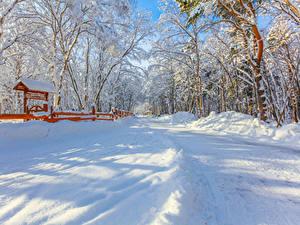 Фото Россия Зимние Дороги Снег Деревья Yuzhno-Sakhalinsk
