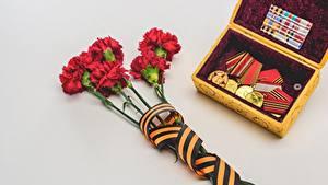 Картинка Гвоздики 9 мая Серая Серый фон Лента Орден Медаль Цветы