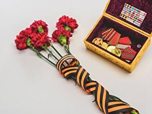 Картинка Гвоздики 9 мая Серый Серый фон Лента Орден Медаль Цветы