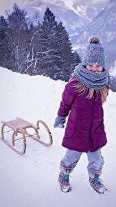 Фото Зима Снег Санках Девочка Куртке В шапке Шарфом ребёнок