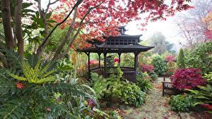 Фотографии Англия Сады Пагоды Walsall Garden Природа