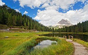 Фотографии Италия Горы Леса Небо Озеро Мосты Пейзаж Облако Трава South Tyrol Природа