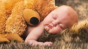 Фотографии Мишки Младенца Спящий