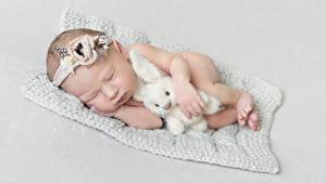 Фото Зайцы Игрушка Сером фоне Младенцы Сон