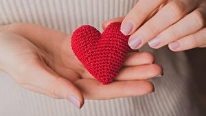 Фотография Крупным планом Руки Сердце