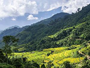Обои Вьетнам Горы Леса Поля Облако Hoang Su Phi Природа