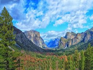 Картинка США Парки Горы Леса Пейзаж Йосемити Облачно Скала Природа