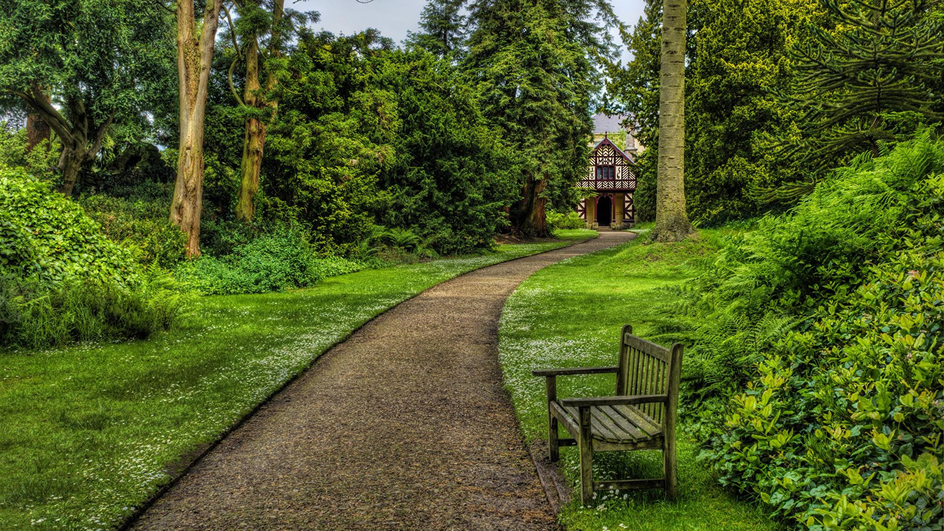 Фото Великобритания Biddulph Grange Garden Природа Парки Газон Скамейка Кусты дерево 1920x1080 парк Скамья газоне кустов дерева Деревья деревьев
