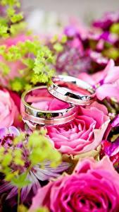 Обои Букет Розы Крупным планом Кольцо Золотой Два Цветы