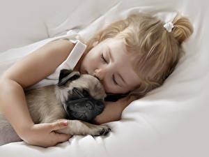 Фото Собаки Мопса Двое Спит Девочка Милые Дети