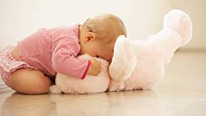 Фотография Плюшевый мишка Грудной ребёнок Дети