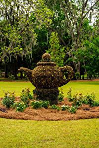 Обои США Парки Скульптуры Чайник Газон Thomasville Rose Garden