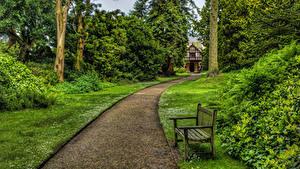 Фото Великобритания Парки Газон Скамейка Кустов Деревья Biddulph Grange Garden Природа