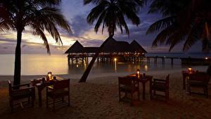 Обои Мальдивы Побережье Вечер Тропики Бунгало Пальма Стола Стулья Пляж Gili Lankanfushi Природа