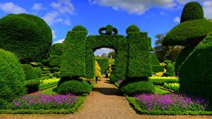 Обои Англия Сады Кусты Дизайна Levens Hall Topiary Garden Kendal Природа