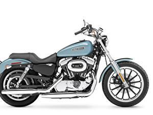 Обои Harley-Davidson Белый фон Сбоку 2007 XL1200L Sportster Low
