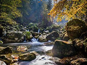 Фотография Швейцария Осенние Водопады Камень Мох Areuse Schlucht Природа