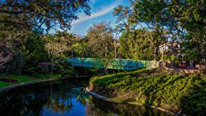 Фотографии Штаты Диснейленд Парки Пруд Мосты HDRI Калифорния Анахайм Дизайн Деревья Природа