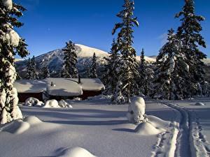 Фотографии Гора Зима Здания Норвегия Снег Тропа Ели mountain Storkletten