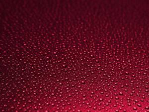 Фотография Текстура Красные Капля Красный фон