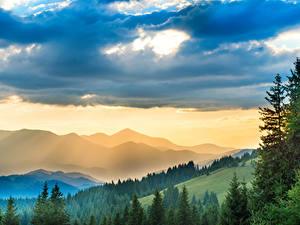 Фото Украина Горы Леса Небо Карпаты Облака Природа